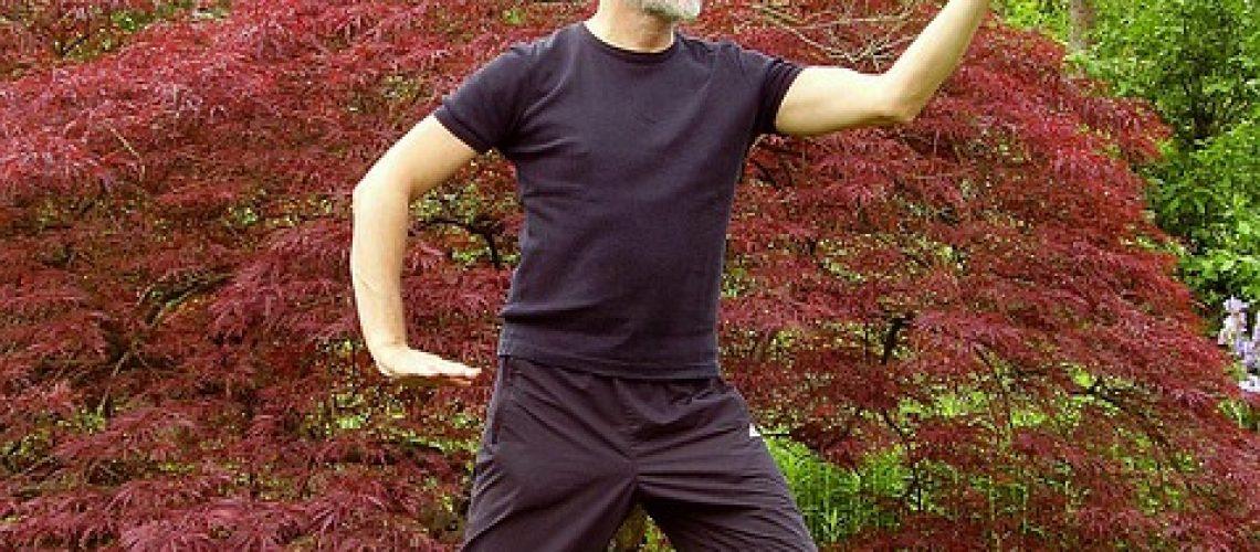 האם משתלם ללמוד צ'י קונג לפי אמיר פרלמן